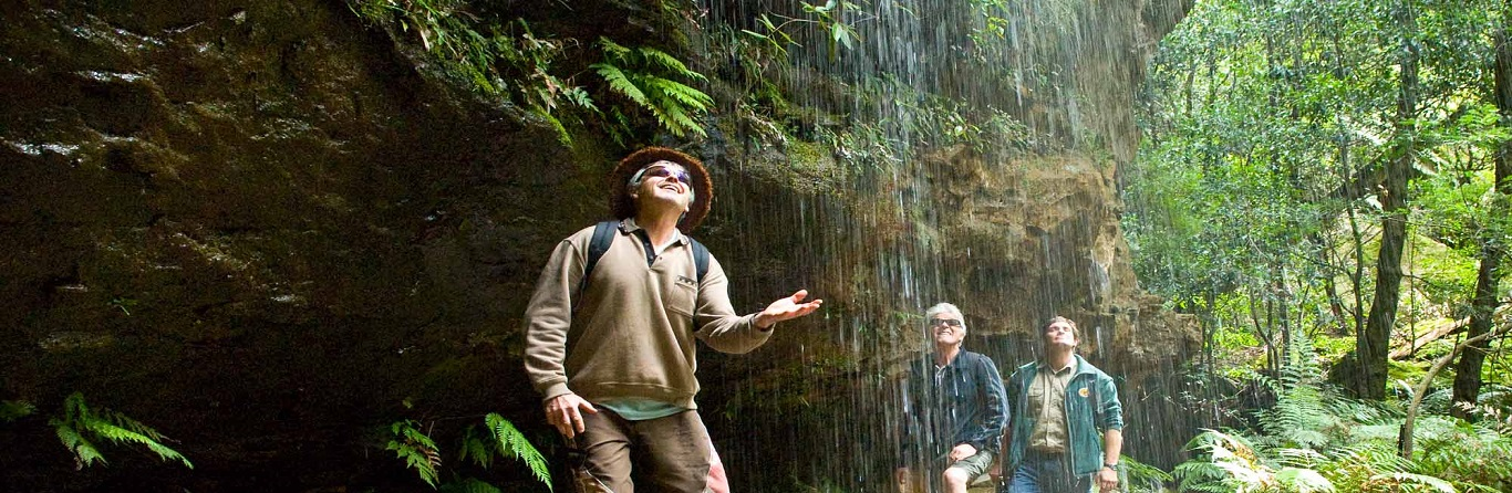 Top 5 Bushwalking Trails in the Blue Mountains Region