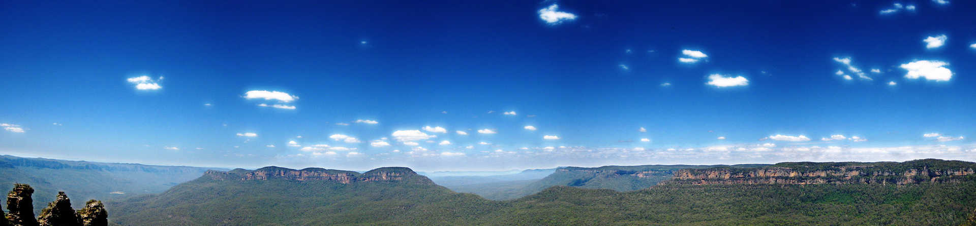 Are there snakes in the Blue Mountains?